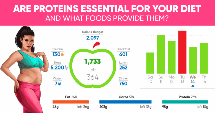 Are proteins essential for your diet?