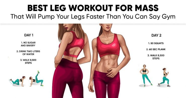Best Leg Workout for Mass