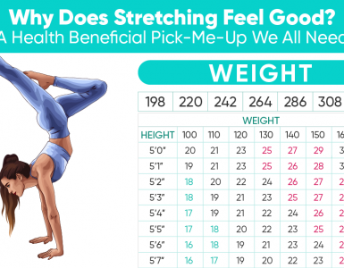 Why does stretching feel good?