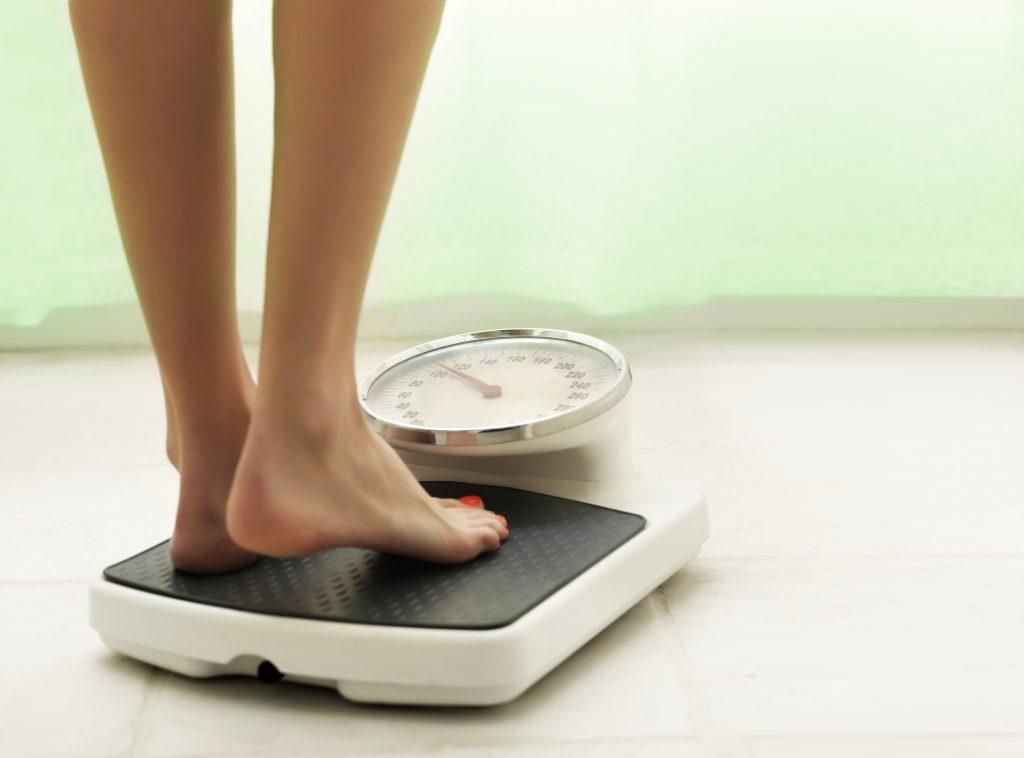 stevia sugar and belly fat