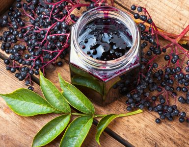 what are the side effects of elderberry