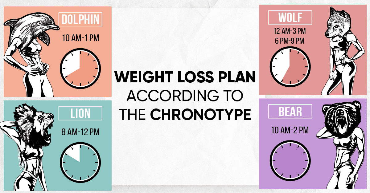 Better Me Animals The 4 Chronotypes And Weight Loss