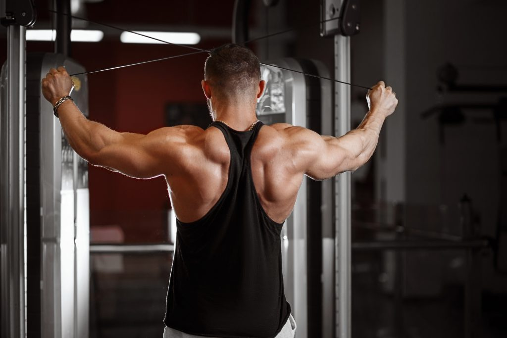 weights vs calisthenics frequency