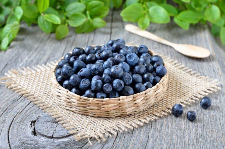 benefits of bilberries
