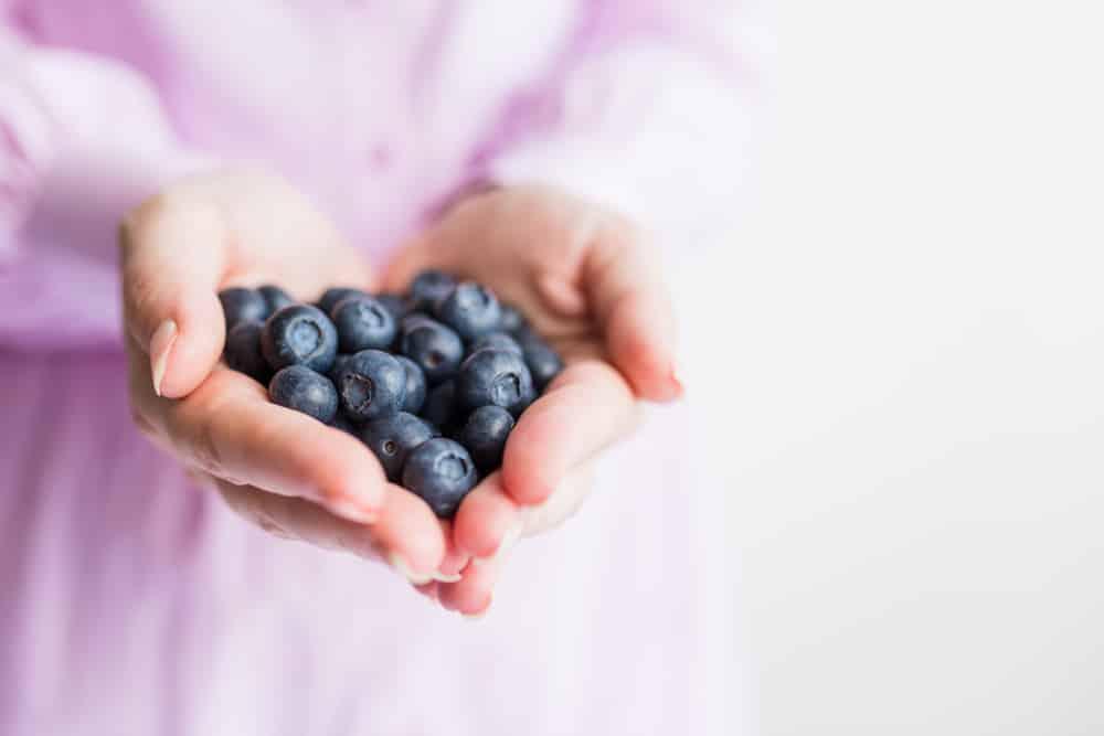 bilberry benefits weight loss