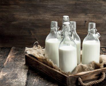 best milk alternative for weight loss