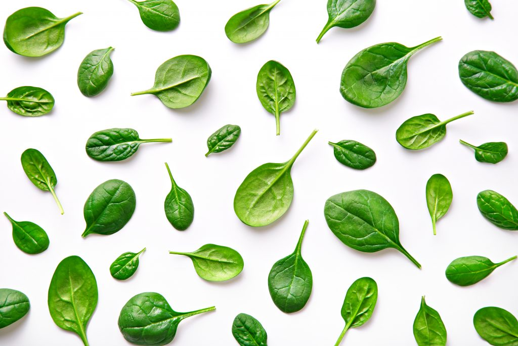 is spinach extract good for weight loss