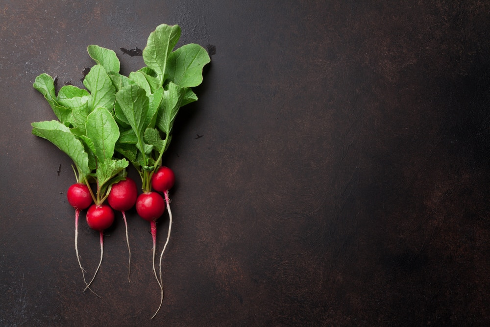 are radishes good for weight loss