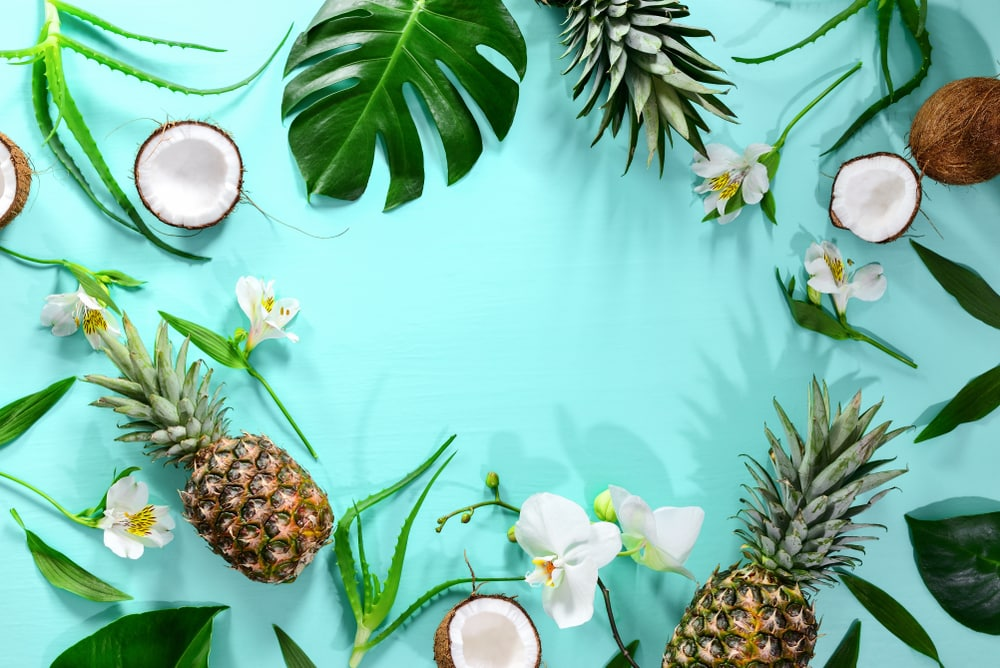 fruitarian diet benefits