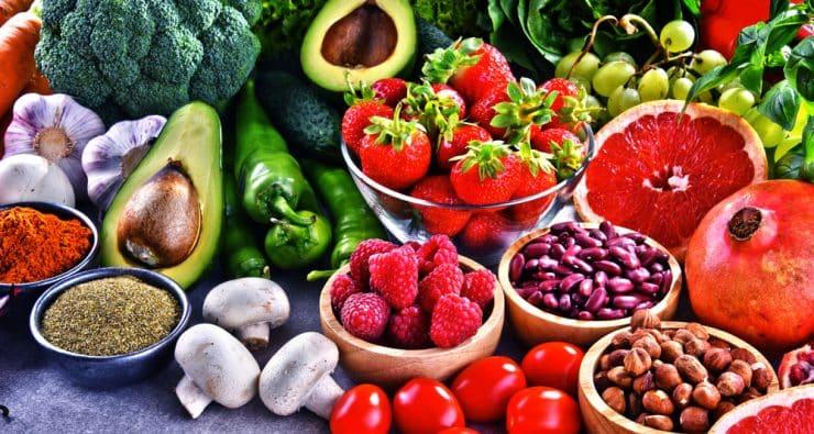low carb vs vegan diet