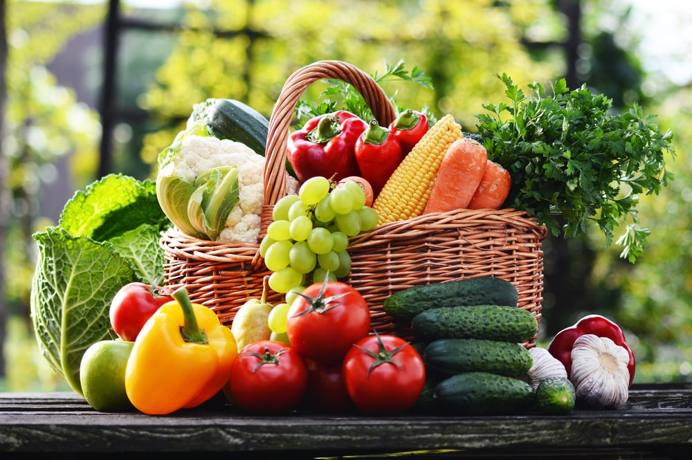 low carb vs low fat for vegan