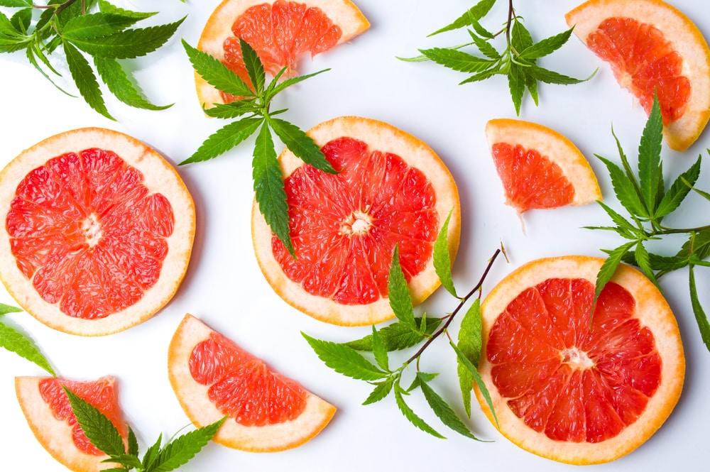 7 day egg and grapefruit diet menu