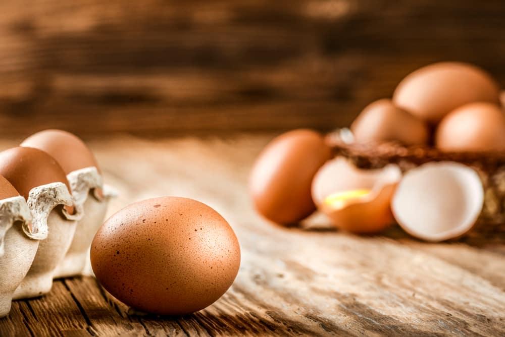 top 10 metabolism boosting foods