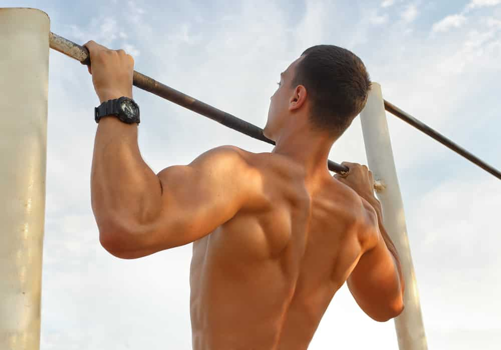 back workouts for mass without weights