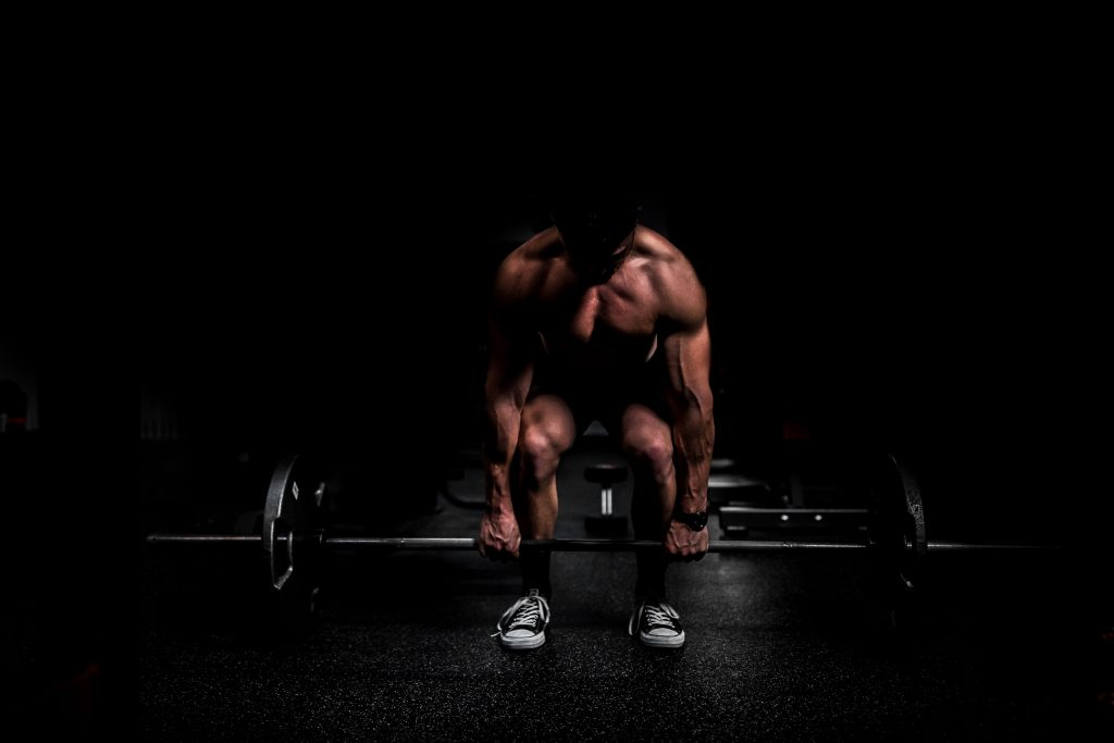 full body workouts for ectomorphs