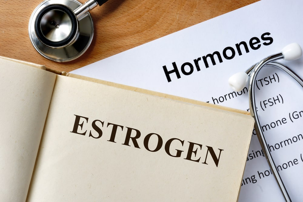 progesterone and weight loss estrogen dominance