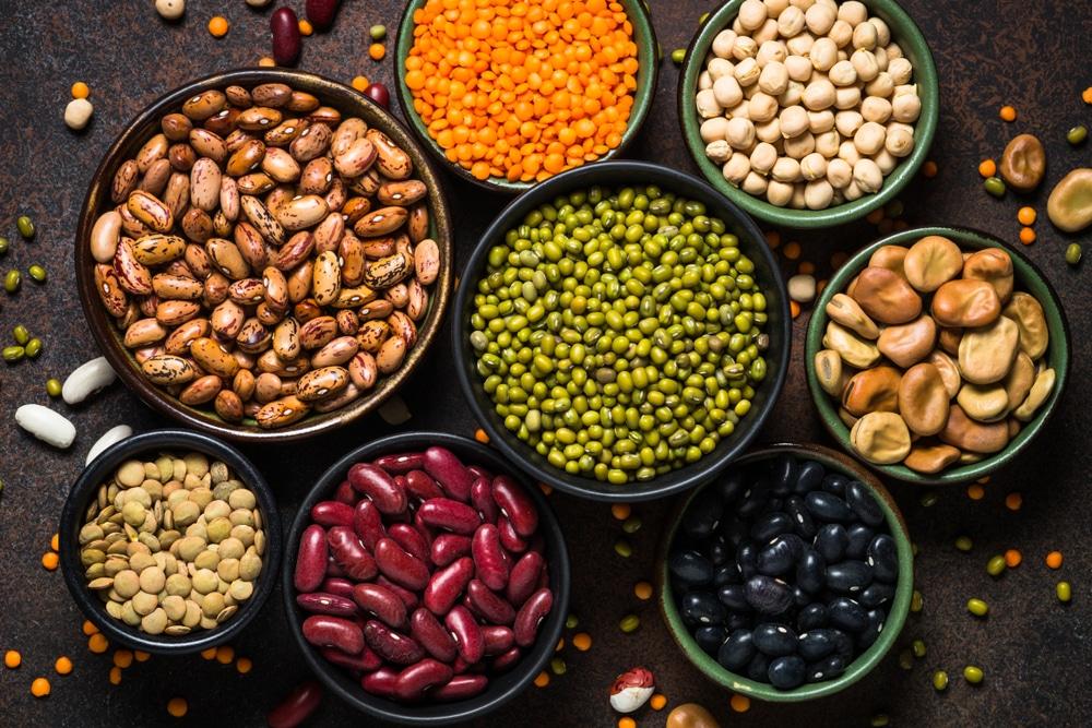 essential amino acids vegan