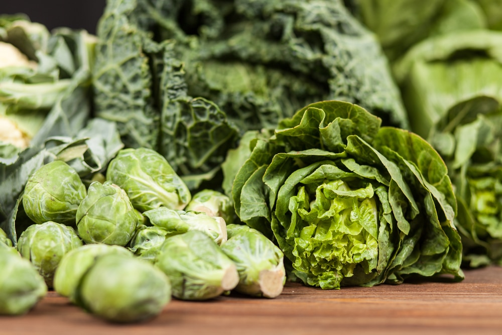 foods to boost testosterone bodybuilding