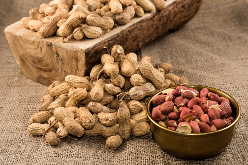 vegan foods with all essential amino acids