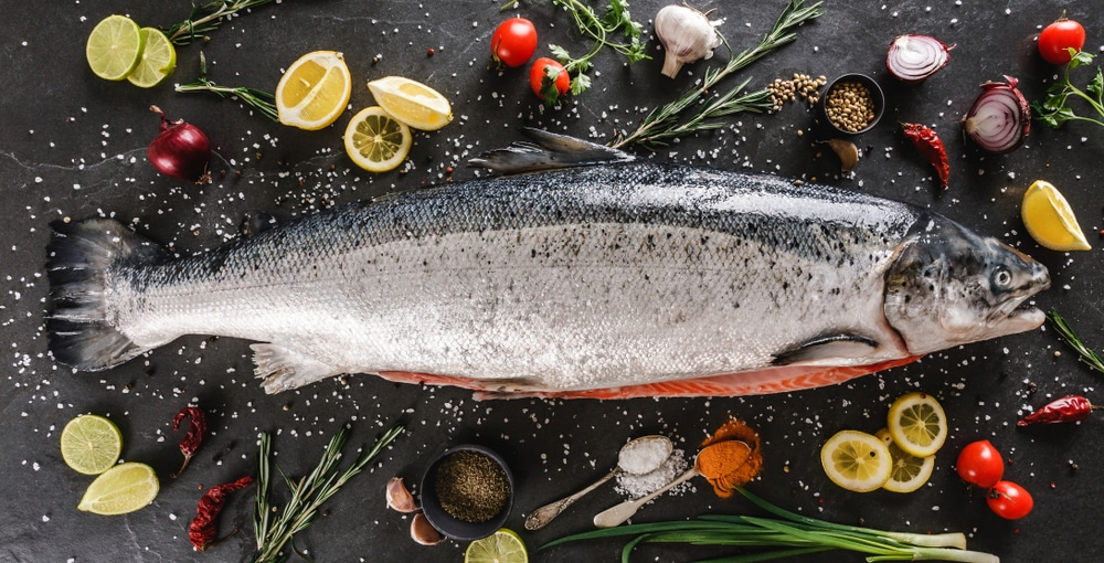 protein in salmon
