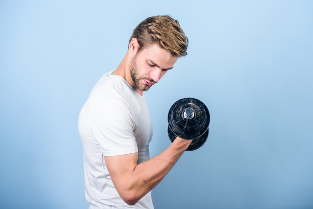 male 2300 calorie meal plan