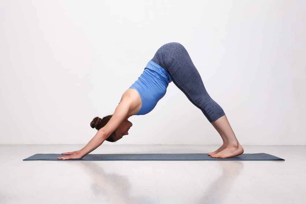 beginner yoga stretches
