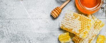 agave nectar vs honey