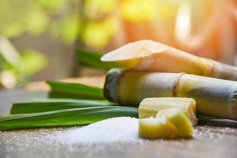 organic coconut sugar vs pure sugar cane