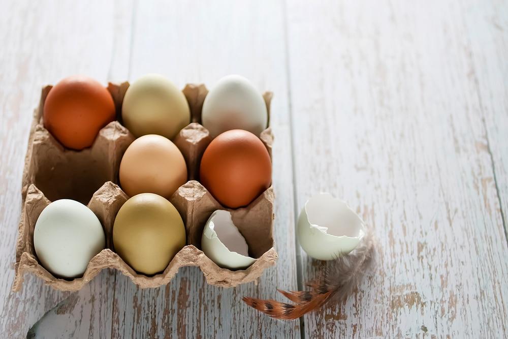 craving eggs