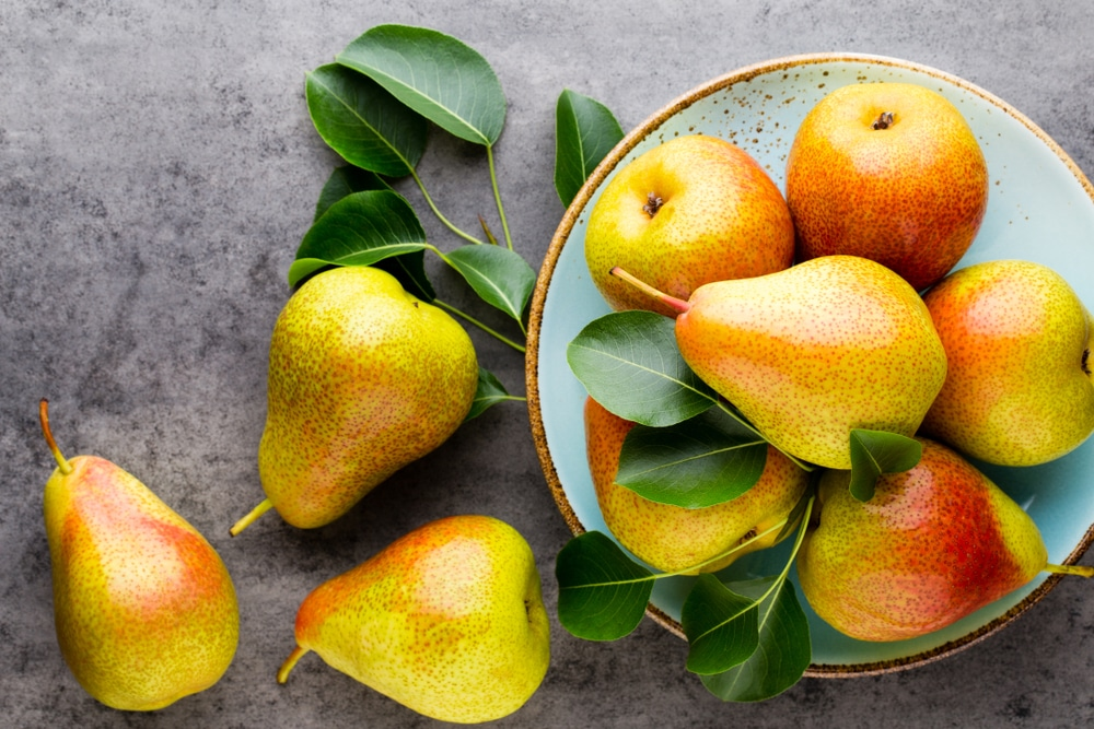 list of fruit to eat during pregnancy
