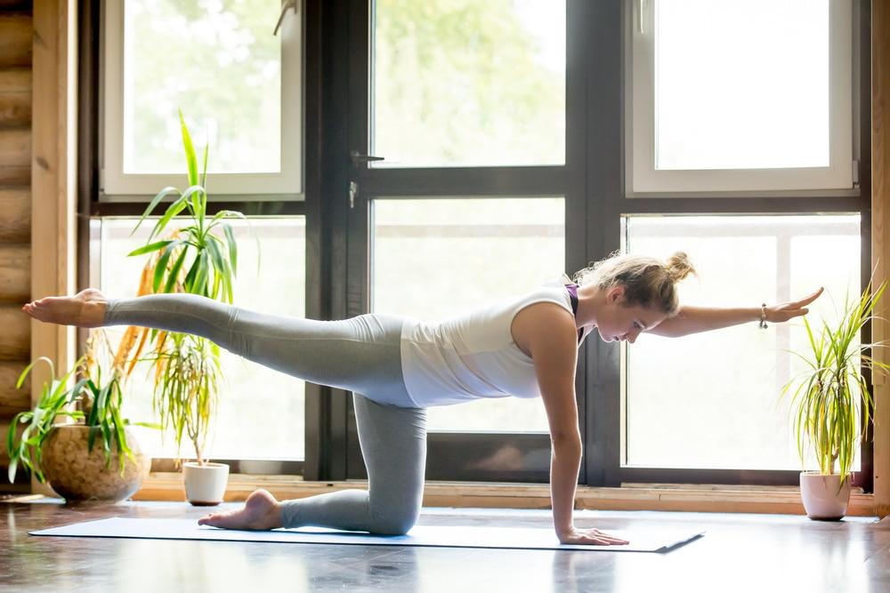 fitness basics pilates and ab system