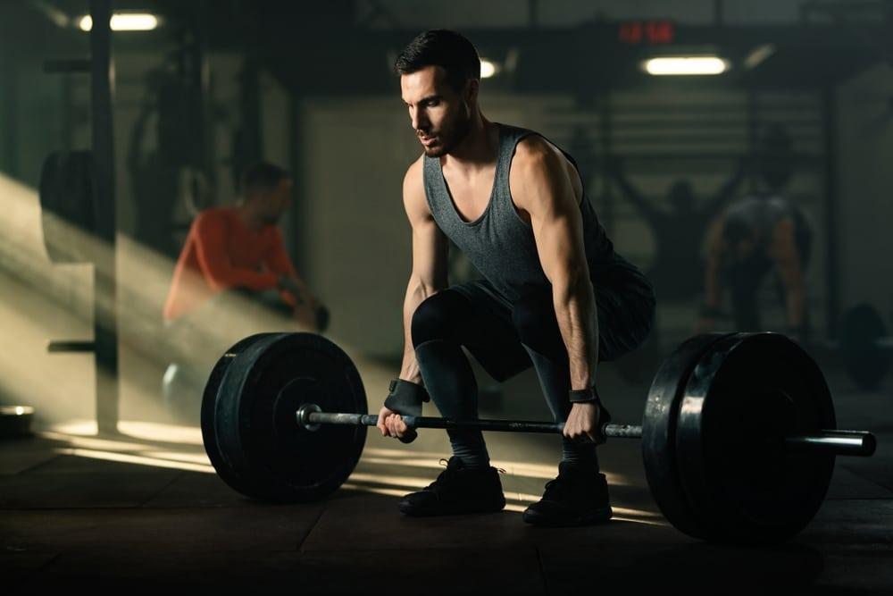 4 week beginner weight lifting workout