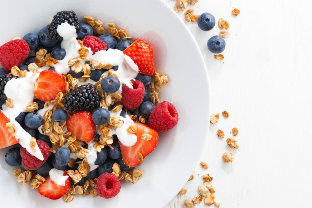 raw food diet meal plan
