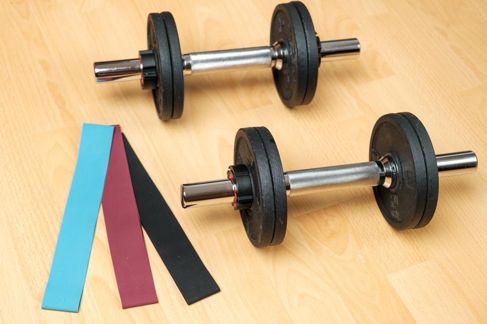 bodybuilding program