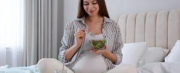 low carb diet pregnancy menu