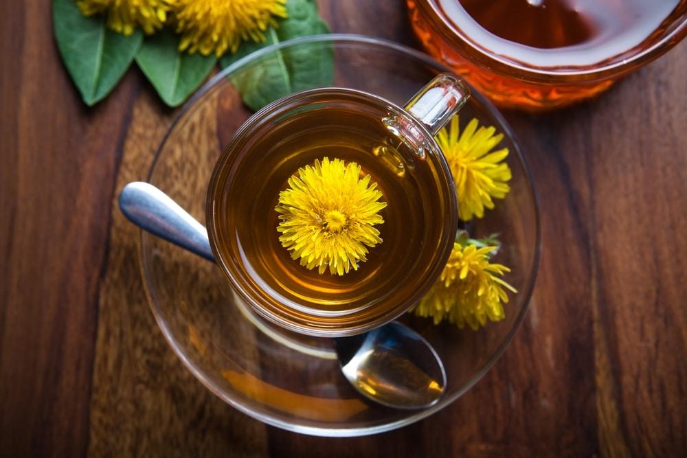 dandelion detox tea benefits
