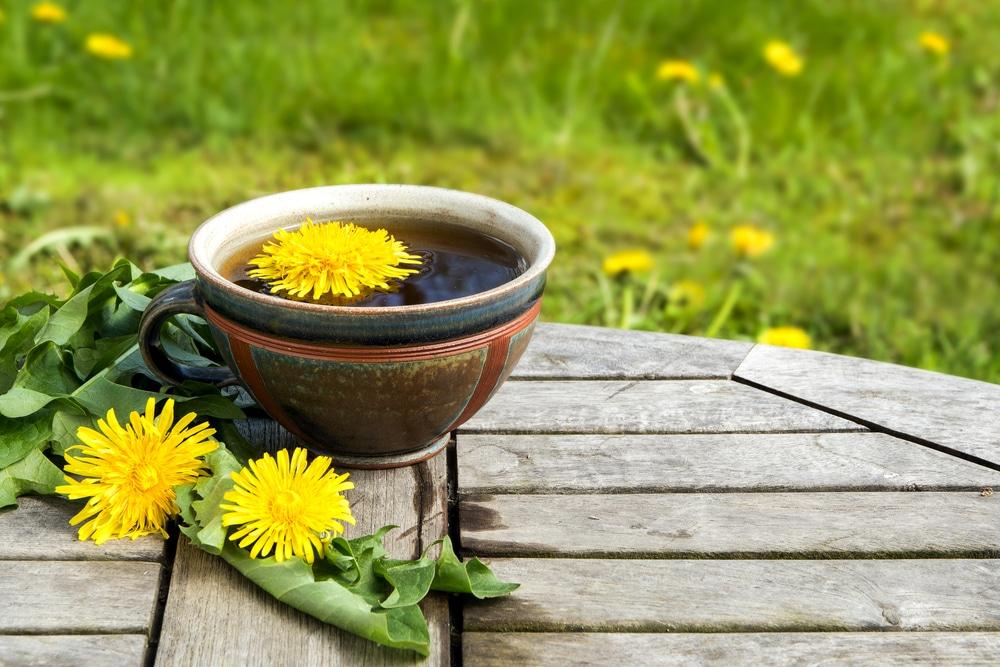 dandelion root tea detox