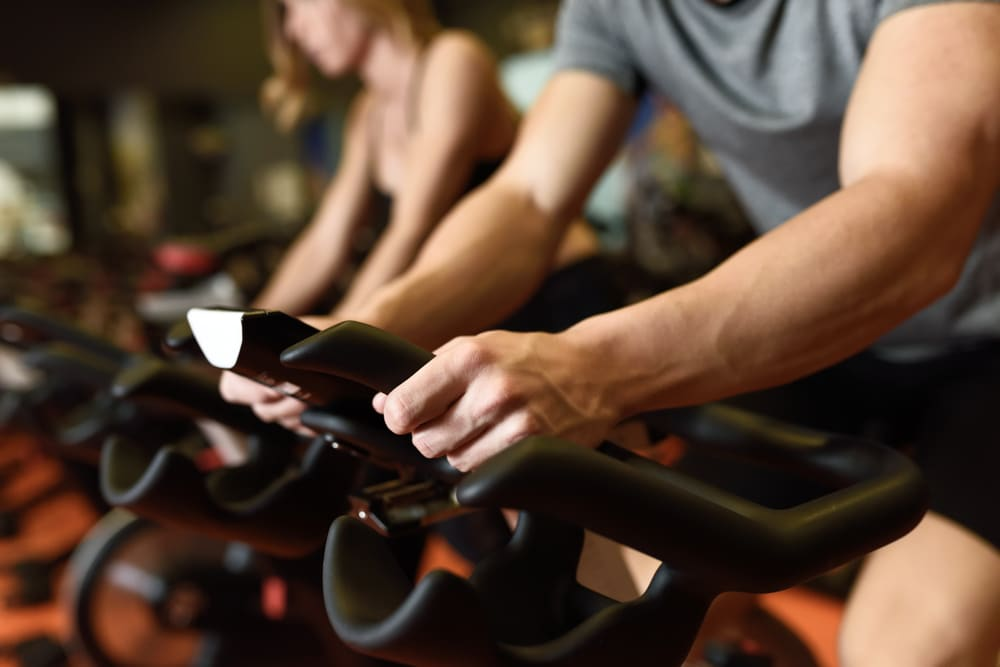 muscle gain workout plan