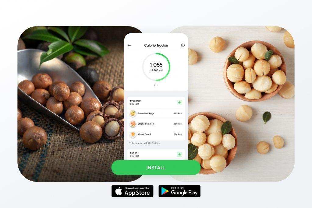 Macadamia Nuts Calories