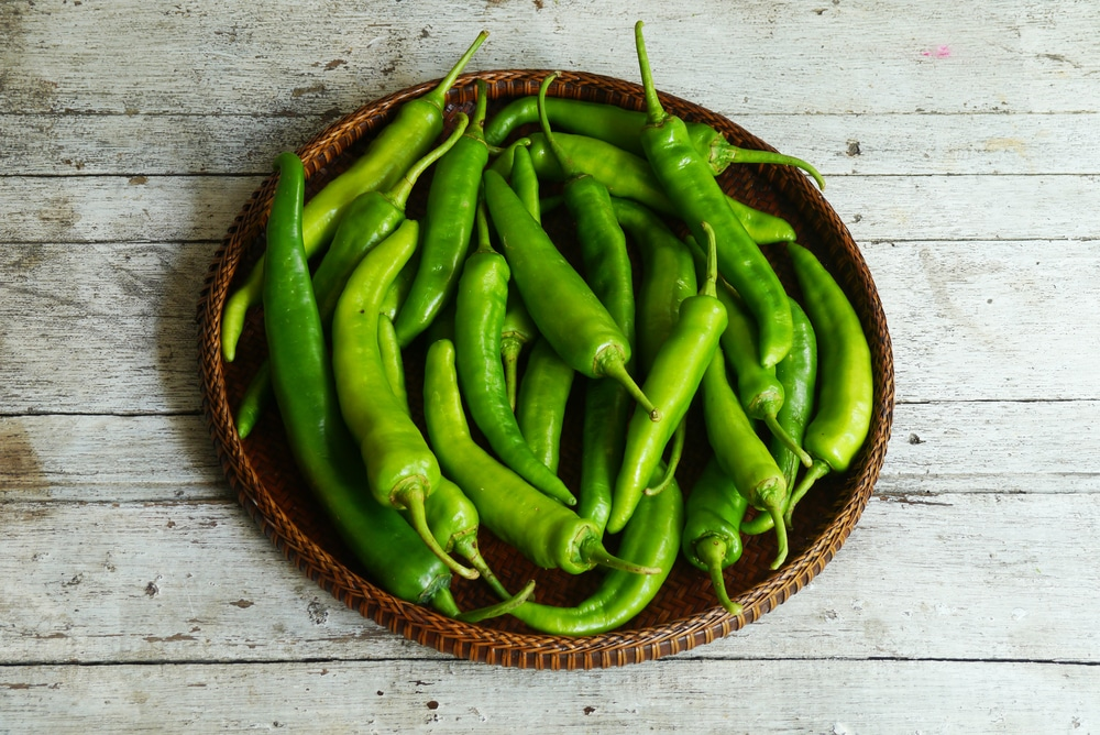 calories in bell pepper
